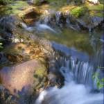 Colorado Tranquility